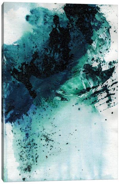 Tofino West Coast Canvas Art Print