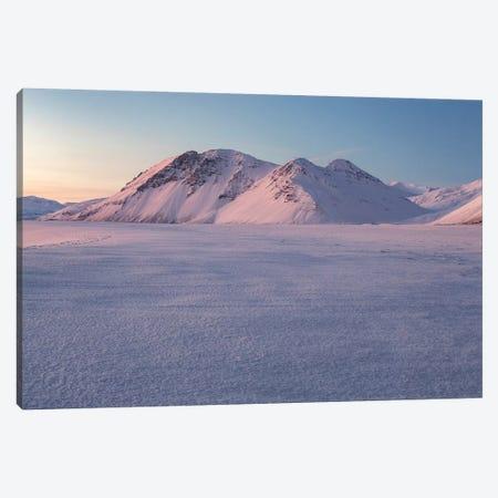 Iceland Eystrahorn XV Canvas Print #DCL20} by David Clapp Canvas Print