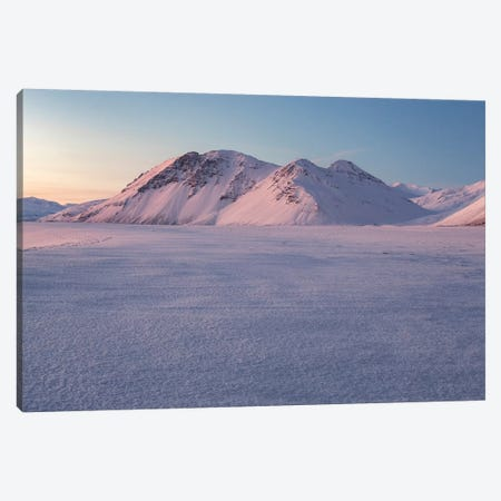 Iceland Eystrahorn XV 3-Piece Canvas #DCL20} by David Clapp Canvas Print