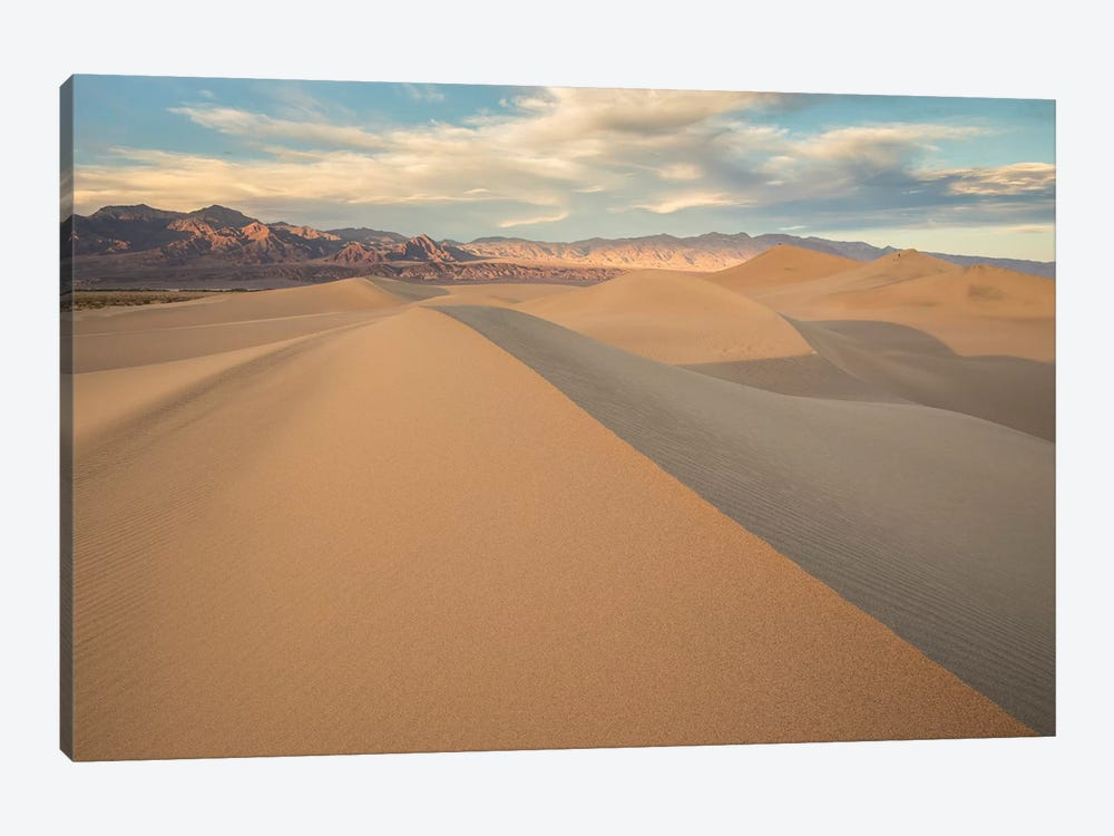 Mesquite Dunes I by David Clapp 1-piece Canvas Print