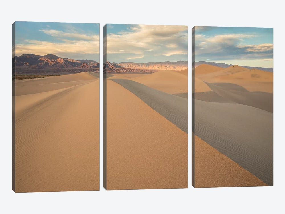 Mesquite Dunes I by David Clapp 3-piece Canvas Art Print