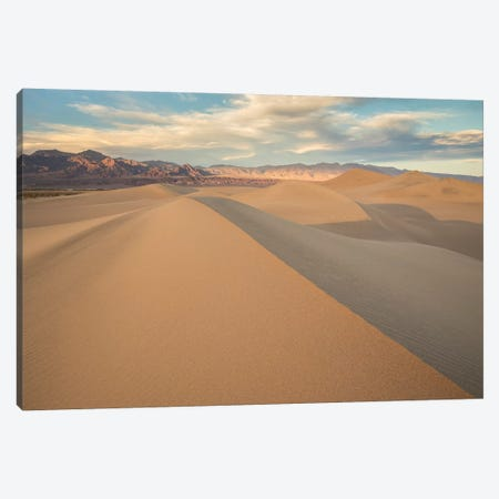 Mesquite Dunes I Canvas Print #DCL51} by David Clapp Canvas Art