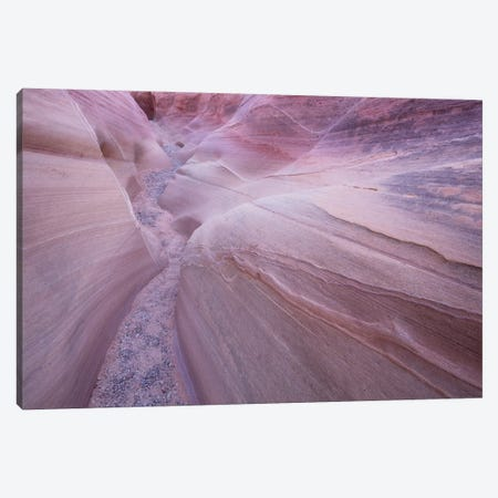 Nevada Valley Of Fire VII Canvas Print #DCL60} by David Clapp Art Print