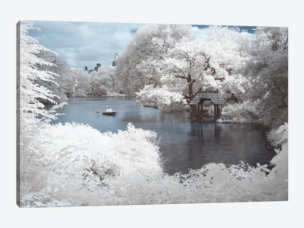 New York Central Park IV by David Clapp 1-piece Canvas Art Print