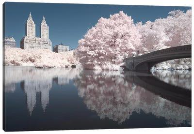 New York Central Park V Canvas Art Print