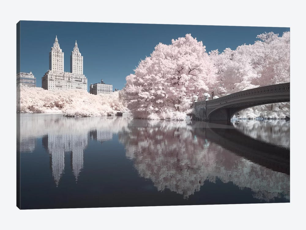 New York Central Park V by David Clapp 1-piece Canvas Wall Art