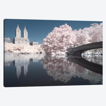 New York Central Park V 3-Piece Canvas #DCL67} by David Clapp Canvas Art