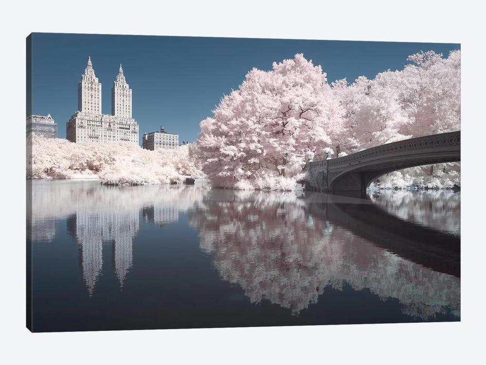 New York Central Park V by David Clapp 1-piece Canvas Wall Art