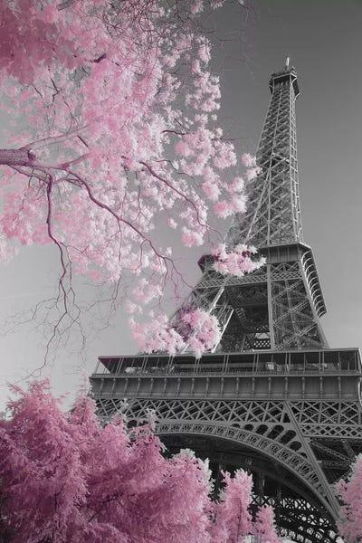 Paris Eiffel Tower Xiii Canvas Art By David Clapp Icanvas