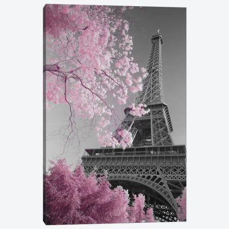 Paris Eiffel Tower XIII Canvas Print #DCL71} by David Clapp Canvas Artwork