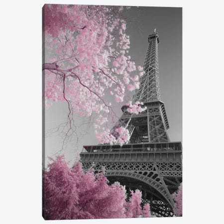 Paris Eiffel Tower XIII Canvas Print #DCL71} by David Clapp Photography Limited Canvas Artwork