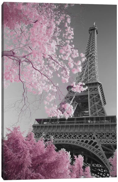Paris Eiffel Tower XIII Canvas Art Print