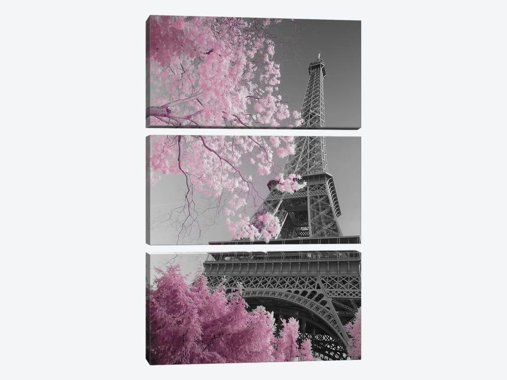 Paris Eiffel Tower XIII by David Clapp 3-piece Canvas Print