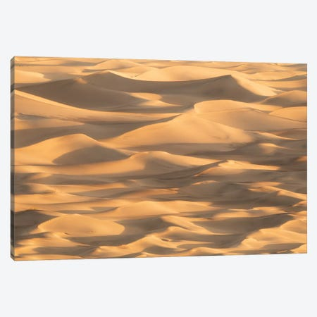 Stovepipe Wells I Canvas Print #DCL77} by David Clapp Canvas Art Print