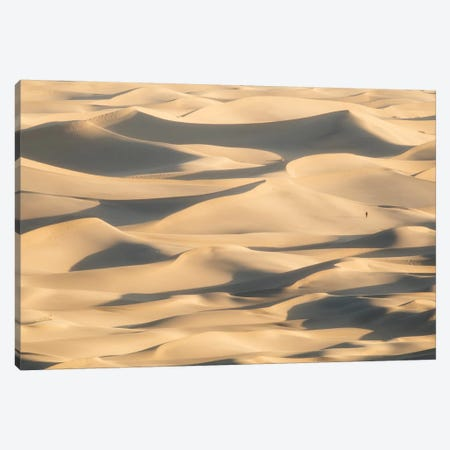 Stovepipe Wells II Canvas Print #DCL78} by David Clapp Canvas Art