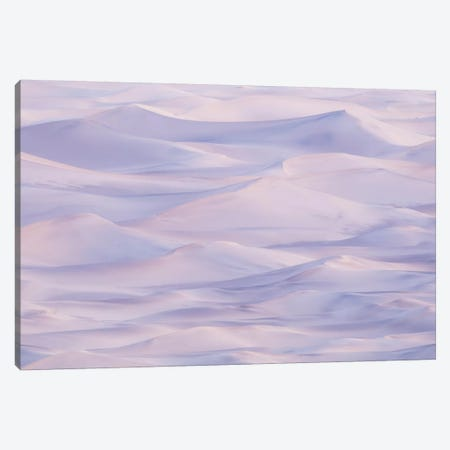 Stovepipe Wells IV Canvas Print #DCL79} by David Clapp Canvas Artwork