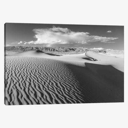 Stovepipe Wells V Canvas Print #DCL80} by David Clapp Canvas Art Print