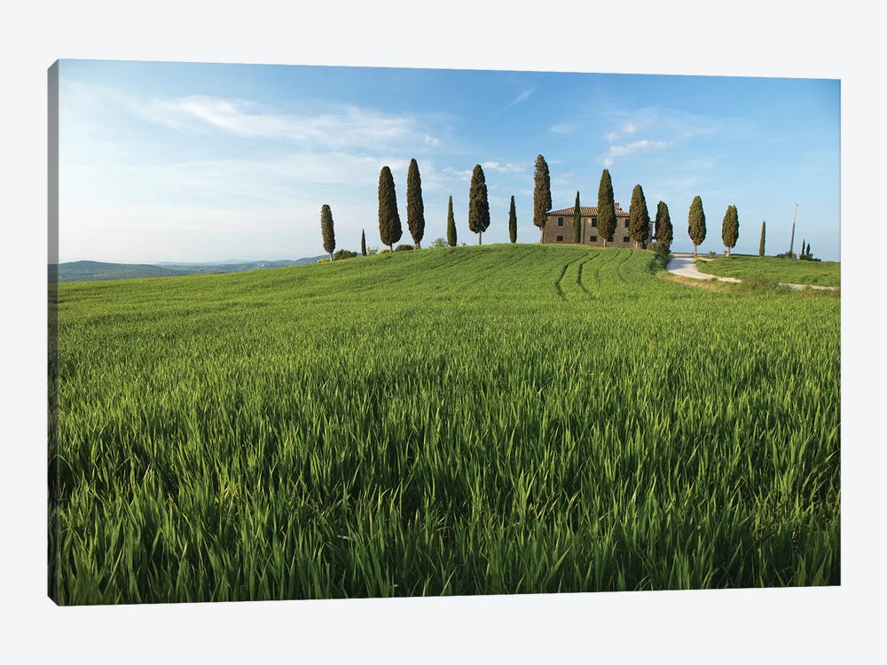 Tuscany Pienza I by David Clapp Photography Limited 1-piece Canvas Print