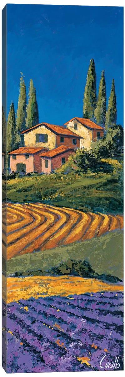 Casale Fra I cipressi Canvas Art Print