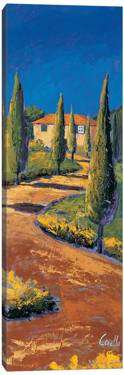 Strada sul poggio Canvas Art Print