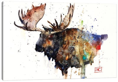 Northern Bull Canvas Art Print