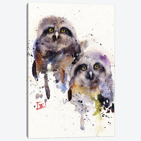 Owlets Canvas Print #DCR106} by Dean Crouser Canvas Print