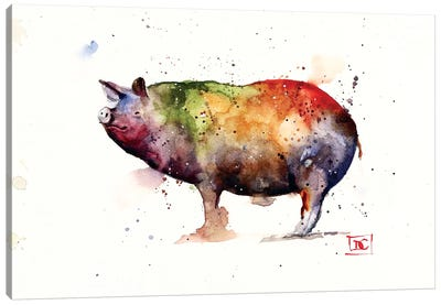 Pig Canvas Art Print