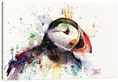 Puffin Canvas Art Print