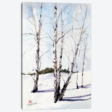 Birch Trees Canvas Print #DCR122} by Dean Crouser Canvas Artwork