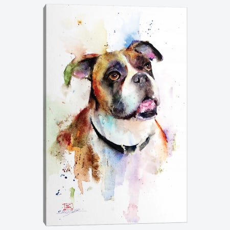 Boxer Canvas Print #DCR124} by Dean Crouser Canvas Art Print