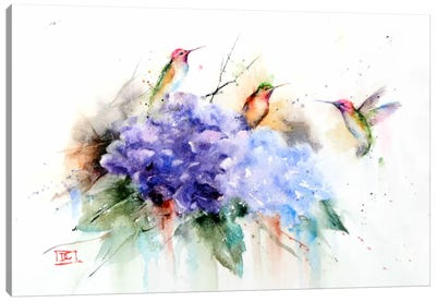 Three Hummingbirds Canvas Art Print