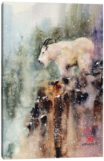 Mountain Goat Canvas Art Print