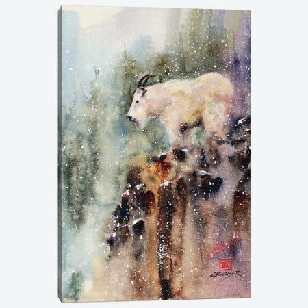 Mountain Goat Canvas Print #DCR134} by Dean Crouser Canvas Wall Art