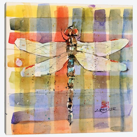 Plaid Dragonfly Canvas Print #DCR137} by Dean Crouser Canvas Wall Art