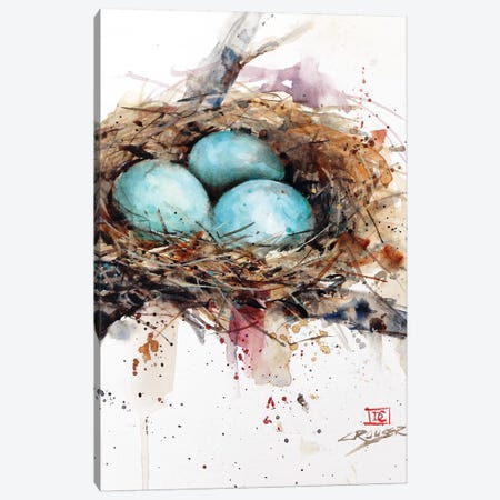 Robins Nest Canvas Print #DCR138} by Dean Crouser Art Print