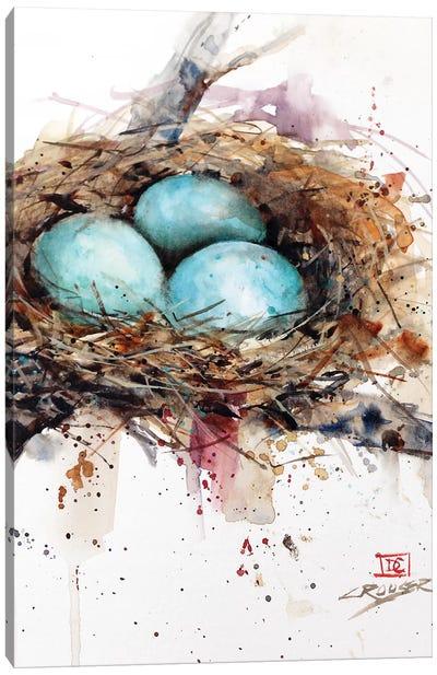 Robins Nest Canvas Art Print