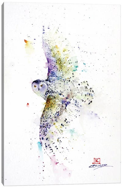 Snowy in Flight Canvas Art Print