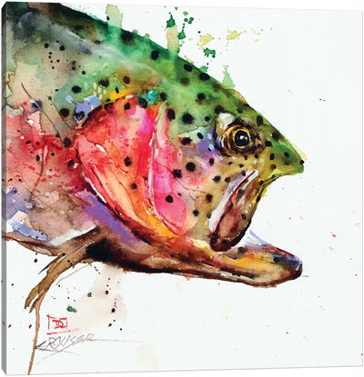 Wild Rainbow Canvas Art Print