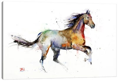 Horse II Canvas Art Print