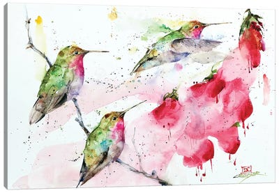 Hummingbirds And Flowers Canvas Art Print