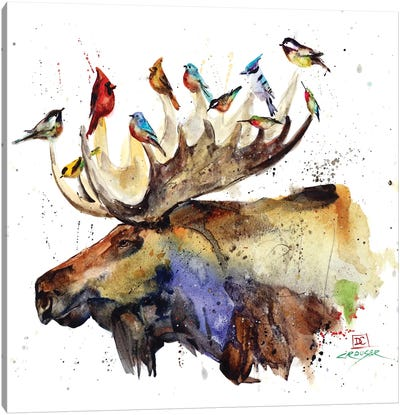 Moose and Birds Canvas Art Print