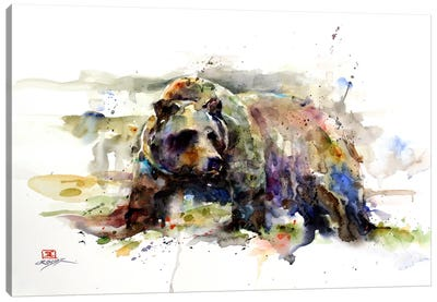 Multi-Colored Bear Canvas Art Print