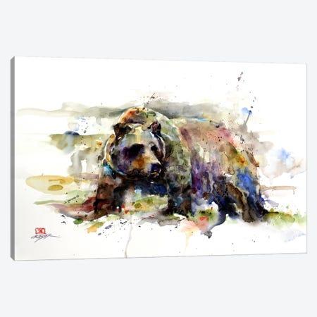 Multi-Colored Bear Canvas Print #DCR18} by Dean Crouser Canvas Wall Art