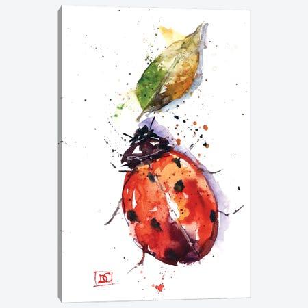 Ladybug Canvas Print #DCR197} by Dean Crouser Canvas Art