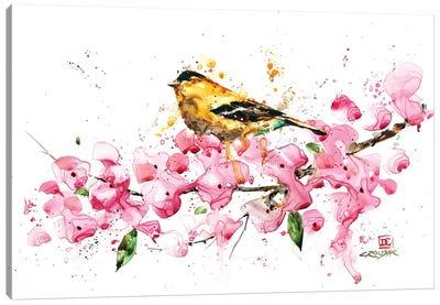 Bird and Cherry Blossoms Canvas Art Print