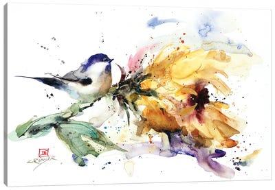 Chickadee and Sunflower Canvas Art Print