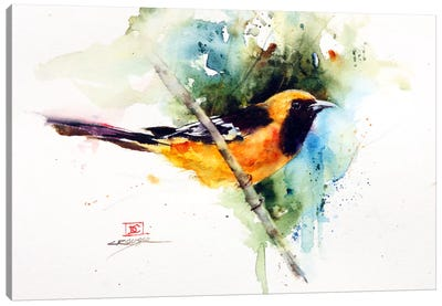 Orange Bird Canvas Art Print