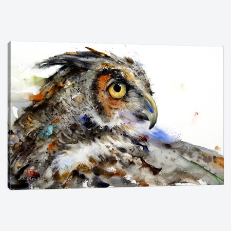 Owl II Canvas Print #DCR25} by Dean Crouser Canvas Art