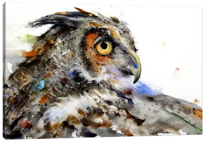 Owl II Canvas Print #DCR25