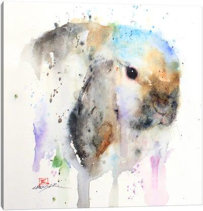 Rabbit Canvas Print #DCR26